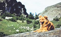(Aese Cé 13) Tags: lima marcahuasi peru cielo highlands landscape landscapes montains montañas naturaleza nature sky views