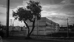 mesa 7060008 (m.r. nelson) Tags: mesa az arizona america southwest usa thewest wildwest mrnelson marknelson markinaz newtopographic urbanlandscape artphotography blackwhite bw monochrome blackandwhite