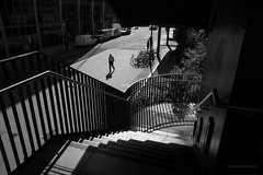 Moor Lane Stairs (cybertect) Tags: carlzeissdistagont25mmf28mm cityoflondon ec2 london londonec2 moorlane sonya7ii thebarbican blackwhite blackandwhite monochrome shadow staircase stairs england unitedkingdom