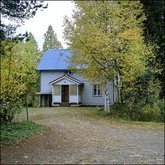 Mörkret - Fuji Provia 100F (magnus.joensson) Tags: sweden swedish dalarna fulufjället autumn hasselblad 500cm zeiss 100f e6 planar 80mm fuji provia 6x6 medium format