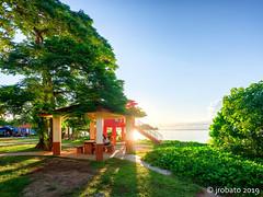 Picnic Ground @ Matapang Beach 02 (orgazmo) Tags: guam guahan landscapes tumon tumonbay sun matapangbeach beaches fujifilm fujinon gfx50r mediumformat gf23mmf4rlmwr shadows trees