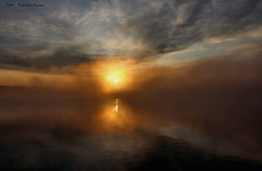 Mystic morning-first frost and the lake is warmer than the air (Patricia Buddelflink) Tags: sunrise lake mist clouds landscape nature