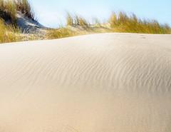 WindPlay.jpg (Klaus Ressmann) Tags: klaus ressmann omd em1 beach dune foleron grass landscape nature winter design flcnat klausressmann omdem1
