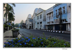central bandung (harrypwt) Tags: borders framed harrypwt canons95 s95 visitindonesia bandung dawn sunrise city street light flowers