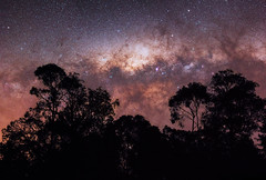 Milky Way at Dwellingup, Western Australia (inefekt69) Tags: milky way dwellingup lane poole reserve western australia great rift panorama stitched ms ice landscape wide astrophotography astronomy stars galaxy galactic core space night photography nikon 35mm d5500 dslr long exposure perth southern southernhemisphere cosmos outdoor sky ioptron skytracker tracked nature milkyway