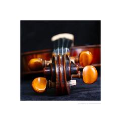 Violin scroll (G. Postlethwaite esq.) Tags: dof macro unlimitedphotos adjusters beyondbokeh bokeh closeup depthoffield inlay motherofpearl musicalinstrument photoborder selectivefocus strings tailpiece violin