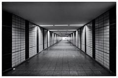 U-Bahn Messehallen (butschinsky) Tags: hamburg sw schwarzweis schwarzweisfotografie bw blackandwhite blackwhite monochrom architektur tunnel sony sonydscrx100m3 rx100iii rx100m3 dscrx100m3 ubahnmessehallen ubahnstationmessehallen ubahnhof messehallen guessedbybengun guessedhamburg ubahnstation
