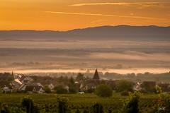 Petit matin dans les vignes (imagene74) Tags: alsace leverdesoleil vignes villages leverdujour brume