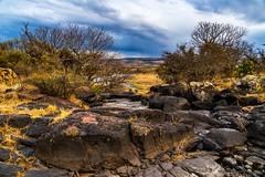 Riverbed in the drylands (FVillalpando) Tags: elsalto rocks landscape semiarid wild clouds riverbed ngysa