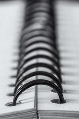 One In A Row (sdupimages) Tags: macromondays bw nb bokeh macro spiral spirales blackwhite noiretblanc noirblanc inarow