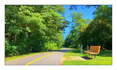On the Shining Sea Bike Path (Timothy Valentine) Tags: large bench camera2 2019 0919 monday northfalmouth massachusetts unitedstatesofamerica