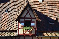 Nuremberg (angelsgermain) Tags: window attic roof tileroof tiles wood halftimberedwork flowers flowerpots light summer medieval building town nuremberg nürnberg bavaria germany deutschland