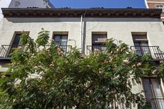 balconies and windows (Lucie Maru) Tags: balconiesandwindows window glass houses house architecture urban city dwelling