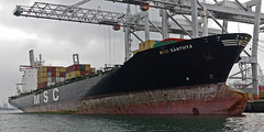 MSC SANTHYA (kees torn) Tags: europoort denieuweprins ret fastferry hoekvanholland europahaven rhenus containerschepen