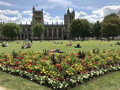 College Green (Bristol, England 2019)