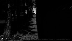 (Luther Roseman Dease, II) Tags: city light blackandwhite monochrome shadows streetphotography framing depth noireetblanc silhouette contrejour darkened humanelement