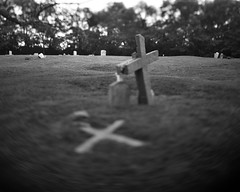 Double Cross (cbadams2) Tags: 2019 20191006 4x5 autumn caffenolcl crowngraphic fall graflex graveyard ilfordfp4 kodakextar127mm october standdevelopment westport