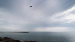 Monday Morning (justenoughfocus) Tags: beach water carnon sonyalpha luminar sea sky france clouds europe mediterranean minimalism mauguio hérault travelphotography sonyimages skylum