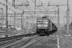 milano area settembre 2019 #40 (train_spotting) Tags: milanorogoredo dbcargoitaliasrl lenord ferrovienordmilano nordcargo traxxf140dc e4831075nc bombardier nikond7100