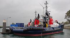 SMIT CHEETAH (kees torn) Tags: bolugatowage tug asdtug hybridpowered damenshipyard scheurhaven europoort denieuweprins ret fastferry calandkanaal
