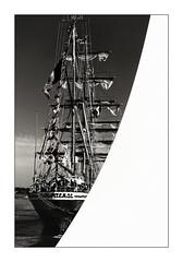 ARM Cuauhtémoc (Jean-Louis DUMAS) Tags: bw black blackandwhite blackwhite blackwhitephotos noir noirblanc noiretblanc noireblanc bateau boat monochrome bordeaux voilier voile