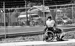 Mobility (creepingvinesimages) Tags: hmm monochrome blackandwhite bw wheelchair elderly man person people street outdoors gaston oregon nikon d7000 pse14 topaz
