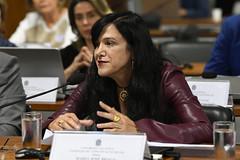 CCS - Conselho de Comunicação Social (Senado Federal) Tags: ccs reuniã£o limite redessociais mariajosã©braga brasãlia df brasil reunião mariajosébraga
