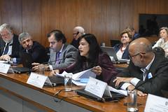 CCS - Conselho de Comunicação Social (Senado Federal) Tags: ccs reunião limite redessociais daviemerich sidneysanches miguelmatos mariajosébraga edwilsondasilva brasília df brasil