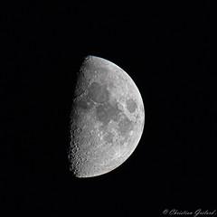 Half Moon (christian.grelard) Tags: moon halfmoon half lunar space sky night black blackandwhite bw noiretblanc noir monochrome