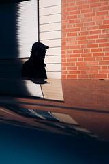 Shadow on a car (Guido Klumpe) Tags: candid street streetphotographer streetphotography strase hannover hanover germany deutschland city stadt streetphotographde unposed streetshot gebäude architecture architektur building perspektive perspective color farbe kontrast contrast gegenlicht shadow schatten silhouette minimal minimalism minimalistisch simple reduced spiegelung mirror reflection reflected outdoor drausen outside himmel sky
