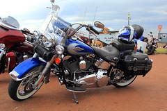 Harley-Davidson (mickyman13) Tags: harleydavidsonfxdbdynastreetbob harleydavidson streetbob fxdbdynastreetbob 2 dyna street bobbobbermotorbikemotorcyclecanoncannon eos norfolk hunstanton seaside transport alltypesoftransport boober motorbike motorcycle canon canon60d