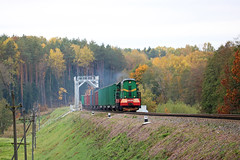 ЧМЭ3-2269 (Life and Photo) Tags: чмэ3 чмэ32269 chme3 train railroad railway road railcar belarus bridge tree trees forest grass green autumn nature landscape locomotive loco beautiful