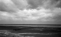 Lost island (Rosenthal Photography) Tags: asa400 kleinbildformat ff135 ilfordlc2912920°c12min nordsee epsonv800 20190905 schwarzweiss ilfordhp5 ilfordrapidfixer olympus35rd analog cuxhaven lostisland island landscape seascape august summer sea northsea germany mood mudflat olympus olympus35 35rd fzuiko zuiko 40mm f17 ilford hp5 hp5plud lc29 129 14 rapid fixer epson v800