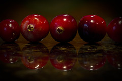 Cranberry Row, Reflected (brucetopher) Tags: cranberry macromondays inarow row rows red reflection berry berries lush shiny vibrant glistening glisten natural organic wild harvest ruby reflect round circle circles cranberries bog float fruit fall autumn unique unusual specialized line straight 5 five food fresh