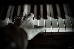 Les notes du passé. (LACPIXEL) Tags: musique music música piano main mano hand noiretblanc blancoynegro blackwhite sony flickr lacpixel