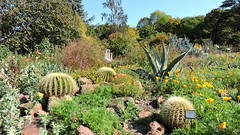 2019-10-07 October in Botanic Garden (beranekp) Tags: czech teplice teplitz botanik botanic garden garten
