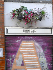 DSC_8989a Shoreditch London Hackney Road Looking Glass Cocktail Club Flower Display (photographer695) Tags: shoreditch london hackney road looking glass cocktail club flower display