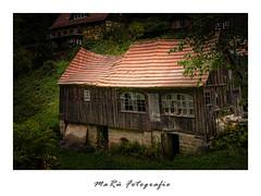Schuppen in Rathen (marue2975) Tags: amseltal lostplaces elbsandsteingebirge bauwerk herbst 2019
