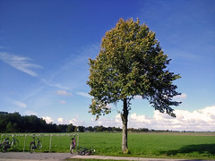 Tree ... (161716252) (Le Photiste) Tags: clay tree harichthenetherlands nederland fryslânthenetherlands fryslânheitelân frysianlandscape nature naturesprime rainbowofnaturelevel1red planetearthnature planetearth earth clouds motorolamotog mobilesnaps cellography bicycle grass meadow landscape dutchlandscape afeastformyeyes aphotographersview autofocus artisticimpressions blinkagain beautifulcapture bestpeople'schoice creativeimpuls cazadoresdeimágenes digifotopro damncoolphotographers digitalcreations django'smaster friendsforever finegold fairplay greatphotographers groupecharlie ineffable infinitexposure iqimagequality interesting inmyeyes livingwithmultiplesclerosisms lovelyflickr myfriendspictures mastersofcreativephotography niceasitgets mostrelevant beautiful perfectview photographers prophoto photographicworld photomix soe simplysuperb showcaseimages simplythebest simplybecause mostinteresting thebestshot thepitstopshop theredgroup thelooklevel1red vividstriking perfect wow worldofdetails yourbestoftoday awesomeview bluesky greatview