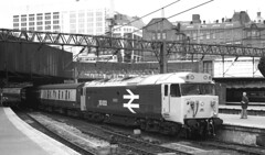 Large logo 50 50003 Temeraire at Birmingham New Street 1984 (flashbangmilly) Tags: 50003 penzance liverpool nst