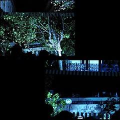 13 - Paris - Nuit Blanche et entours - Parade, Daniel Buren - Paris recadré, travail in situ - Moments (melina1965) Tags: octobre october 2019 îledefrance paris panasonic lumix dmctz57 nuitblanche mosaïque mosaïques mosaic mosaics collages collage 4earrondissement lumière light nuit night reflet reflets reflection reflections arbre arbres tree trees