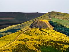 Highlights on a hill (me.darren) Tags: highland landscape slope grassland hill sky ridge mountainouslandforms yellow fell mountain