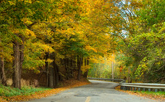 Autumn Road (valan90) Tags: autumn fall autumncolour ancasterontario road countryroad ngysaex
