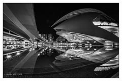 Palau De Les Arts - Ciutat De Les Arts, Valencia (Es). Octubre 5 de 2019...For Marie. (EFRAIN A. JACOME Q.) Tags: night españa spain color ciutat city valencia architecture arquitectura santiago calatrava art arte efraín jácome nikon d850 desing diseño modern cinema cac expositions imax digital 3d dolby dome building planetarium exhibitions