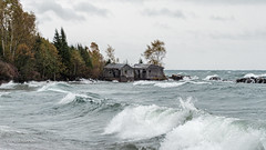 Two Fish House Beach (Lzzy Anderson) Tags: northshore minnesota 2019 october autumn fall changingleaves abandoned building ruins abandonedbuildings woods lake water lakesuperior clouds stormclouds overcast rain storm waves wind