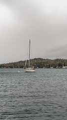 Grand Marais (Lzzy Anderson) Tags: grandmarais minnesota northshore upnorth october 2019 autumn lake water lakesuperior boat sailboat fog mist clouds stormclouds rain storm overcast woods forest changingleaves