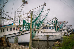 Shrimp Boats (Brad Prudhon) Tags: 2019 boats commercial dock fishing fleet lakecharles louisiana march nets portofcameron rigging shrimp trawlers ships