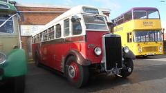 JA 7591 (jeff.day48) Tags: ja7591 191 leyland ts7 englishelectric stockportcorporation preserved classiccoaches 2019bulwarkrunningday