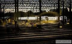 EdgeHillDepot2019.09.26-9 (Robert Mann MA Photography) Tags: edgehilldepot liverpool merseyside train trains railway railways 2019 autumn 26thseptember2019 northern class331 civity transpennineexpress class802 nova1 iet intercityexpresstrain