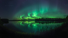 Lady Aurora dancing in the night (M.T.L Photography) Tags: auroraborealis northernlights revontulet water autumn night dark mtlphotography httpsmikkoleinonencom forest trees sky stars nightscape grass reflection panoramicphotography auroraphotography bigdipper serene
